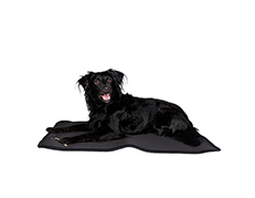 Therapeutic Dog Bed Liner