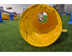 """10 Ft 8""""pitch Tunnel."""